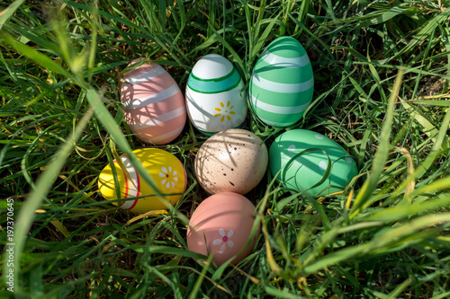 Fotografia  Colorful Easter eggs on the grass in sunny day. Easter concept.