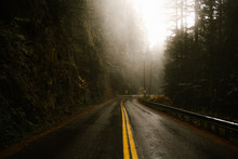 Wet Road Through A Misty And Dark Forest