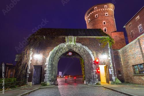brama-do-zamku-krolewskiego-na-wawelu-w-krakowie-noca