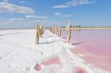 Salty pink lake - 197389645