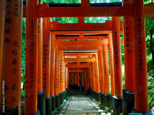 tlo-bramy-w-japonii