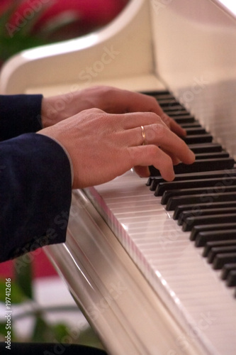 Fotografie, Obraz  Pianist hands playing classical piano music.
