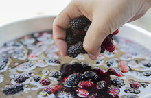 Hand Pumping Mulberry In Water For Make Juicy