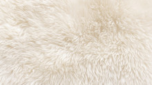 White Wool Texture Background,...