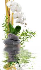 bambou, orchidée blanche et galets avec reflets