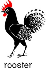 Black Rooster With Red Comb An...