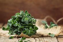 Fresh Green Oregano Or Origanu...