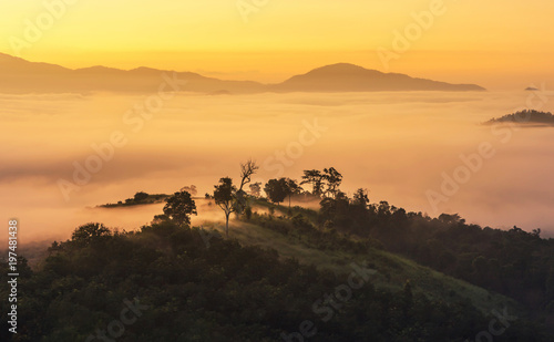 Fotobehang Zwavel geel landscape view of sunrise on high angle view with white fog in early morning over rainforest mountain in thailand