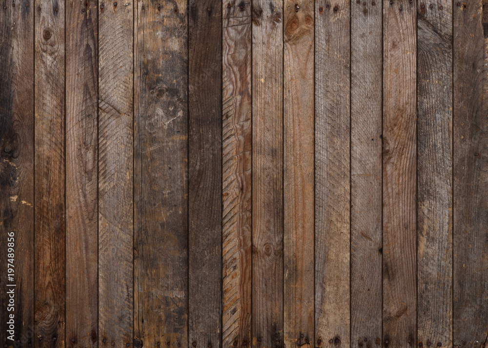 Fototapety, obrazy: Wood texture. Big weathered wooden background from planks with rusty nails. Sharp and highly detailed.