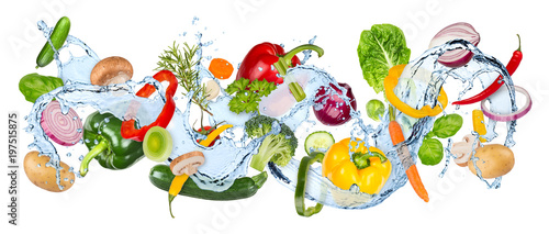 Aluminium Prints Fresh vegetables water splash panorama with various vegetables fresh basil ans thyme herb leafs isolated on white background / gemüse wasserspritzer wasser kochen hintergrund isoliert