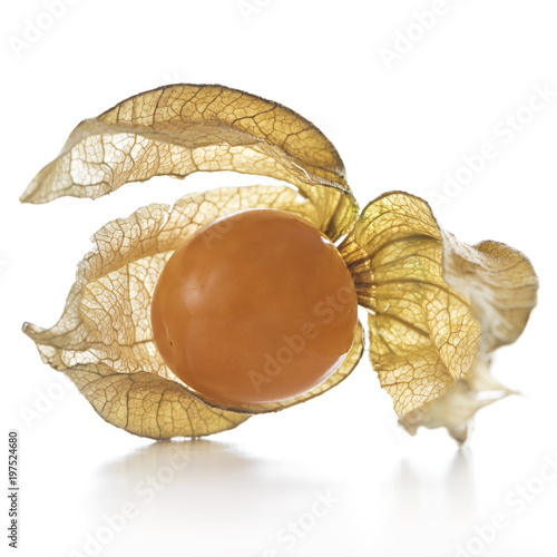 Physalis, fruit with papery husk Canvas Print