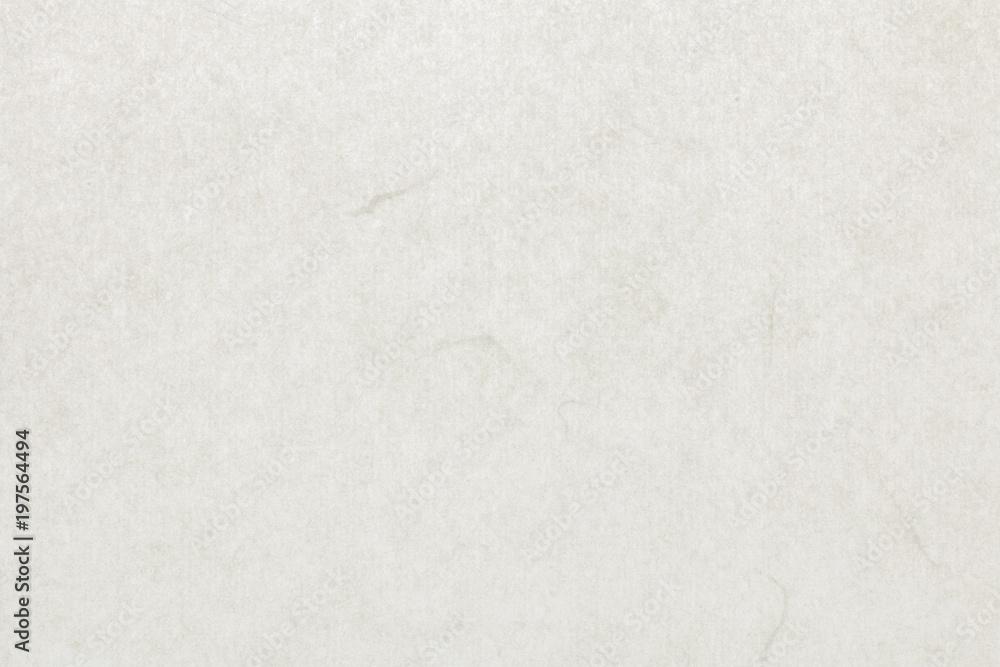 Fototapety, obrazy: 和紙 テクスチャ 白色 背景