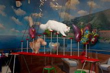 Cat Show Children Circus Show