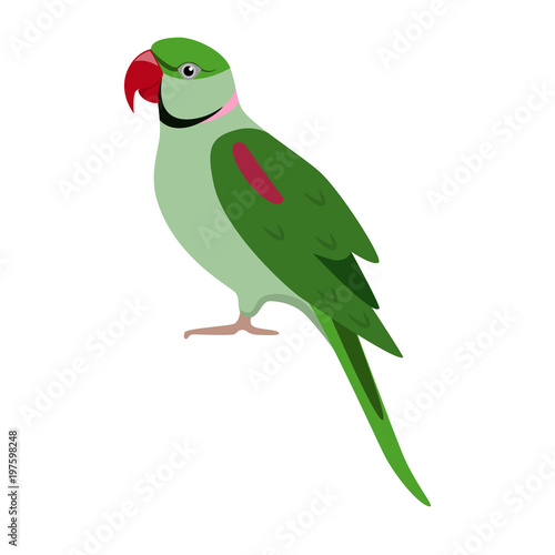 Alexandrine parrot icon in flat style Fotomurales