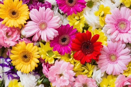 Chrysanthemen, Gerbera und Rosen als Hintergrund aus weissen, gelben, roten und rosa Blüten