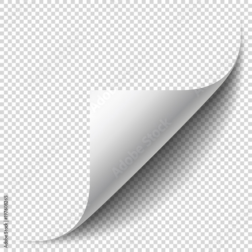 Obraz Blank page with curled corner and soft shadow. Corner of sheet of paper. Realistic vector illustration isolated on transparent background, eps 10. - fototapety do salonu