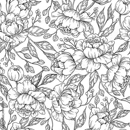 rysunek-piwonia-kwiat-wzor-wektor-recznie