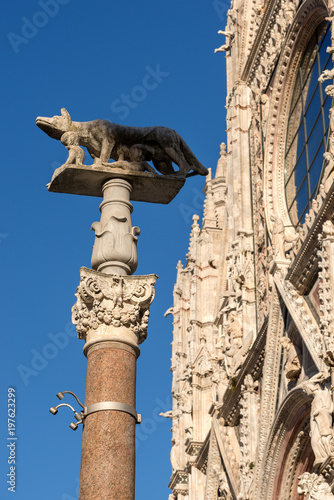 Fotografija  Lupa Senese (she-wolf of Siena) - Symbol of Siena - Italy