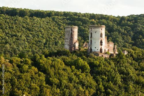 Foto op Aluminium Rudnes The ruins of an old castle in the village of Chervonograd. Ukraine