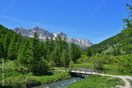 Fotografie, Obraz  Petit pont en bois dans la vallée de la Clarée