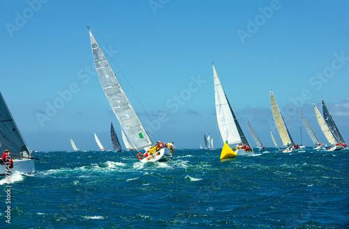 Fotografie, Obraz  Sailing yacht race. Yachting. Sailing