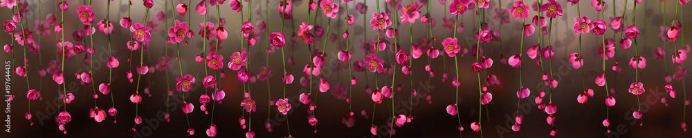 Fototapety, obrazy: Panoramik Çiçek Manzarası
