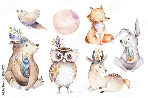 Photo Stands Owls cartoon Cute watercolor bohemian baby cartoon rabbit and bear animal for kindergarten, woodland deer, fox and owl nursery isolated bunny forest illustration for children. Bunnies animals.