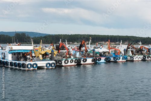Mussel aquaculture boats anchored in the port of O Grove