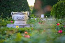 Ceramic Flower Pot Surrounded ...
