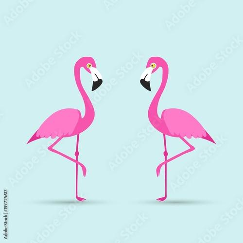 Canvas Prints Flamingo Flamingo bird illustration design on background