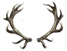 Antlers. Watercolor Illustrati...