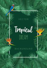 Summer Tropical Background Des...