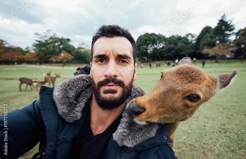 Deers and animals in Nara park, kyoto, Japan