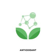 Antioxidant Icon Isolated On W...