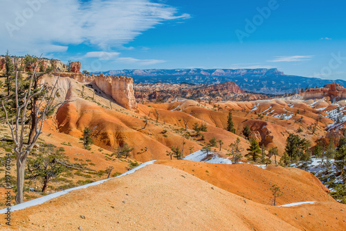 Staande foto Canyon Red-yellow rocks in Bryce Canyon. Panorama of the mountain massif. A tourist place, a stone forest.