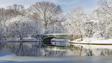 Lullwater Bridge Morning Snow
