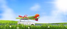 Kleines Auto Mit Bunte Tulpen.