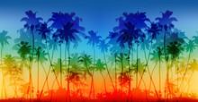 Rainbow Colors Palms Silhouett...
