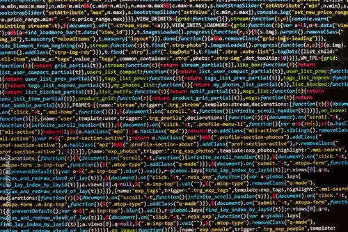Programmer developer screen Canvas Print