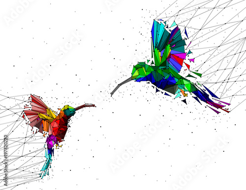 Photographie Abstract of Low poly couple hummingbird with point connecting network,animal geometric concept,vector