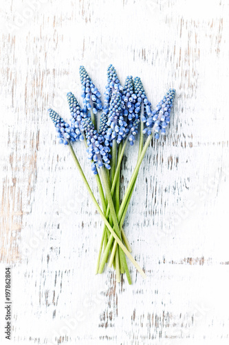 Wall Murals Lily of the valley Grape Hyacinth Flowers on Rustic Wooden Background