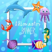 Vector Banner Design With Underwater Fauna.Square Banner.Concept With Marine Animals Crab, Dolphin,seahorse,fishe,jellyfish,star. Underwater Sea Life. Vector Illustration.