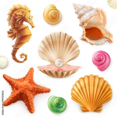 Canvas Print Shell, snail, mollusk, starfish, sea horse. 3d icon set