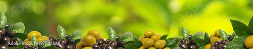 Recess Fitting Aromatische Olives from your favorite garden