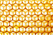 Honeycomb Macro As A Backgroun...