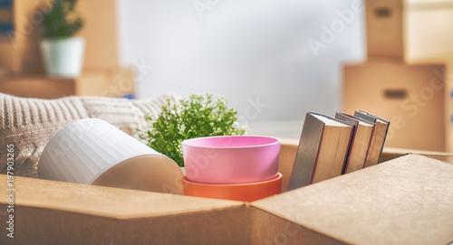 Fotografie, Obraz  Cardboard boxes in room
