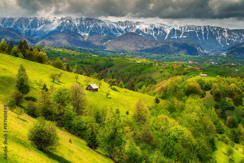 Fototapety, obrazy: Wonderful spring landscape with snowy mountains near Brasov, Transylvania, Romania