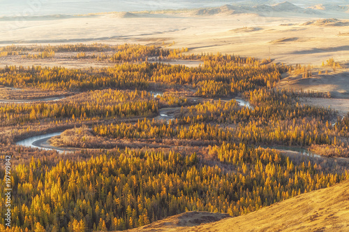 Staande foto Honing The landscape of Altai mountains , in autumn, Siberia, Russia.