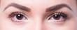 canvas print picture - Braune Augen, Ausschnitt Gesicht