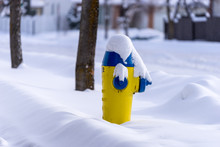 Fire Hydrant In Snow